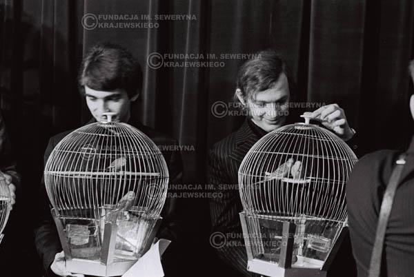 # 854 - 1968r. 'Zgaduj Zgadula' (program tv, papugi jako główna nagroda)