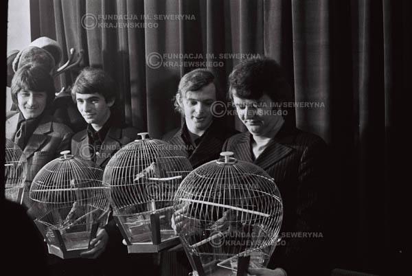 # 856 - 1968r. 'Zgaduj Zgadula' (program tv, papugi jako główna nagroda)